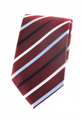 Paul Striped Tie