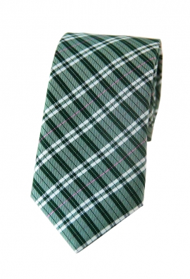 William Green Checkered Tie