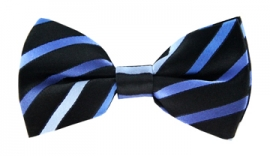 Beckham Blue Striped Bow Tie
