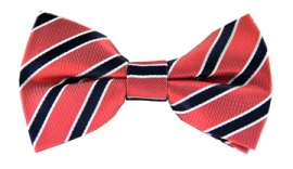 Benson Striped Bow Tie