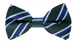 Kobe Green Striped Bow Tie