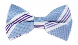 Nico Striped Bow Tie