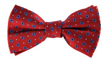 Rohan Paisley Bow Tie TMB011-15BT